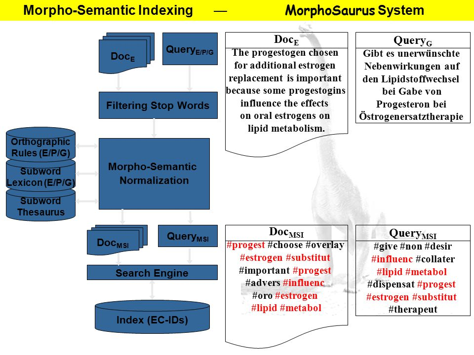 Morpho-Semantic Indexing — MorphoSaurus System