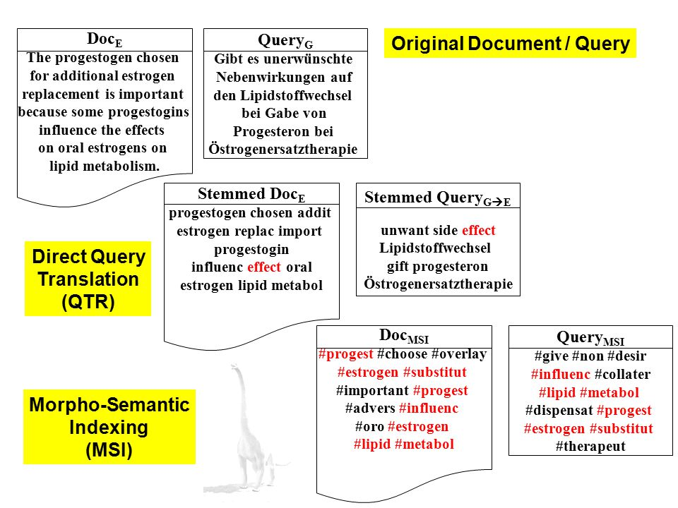 Direct Query Translation (QTR) Morpho-Semantic Indexing (MSI)
