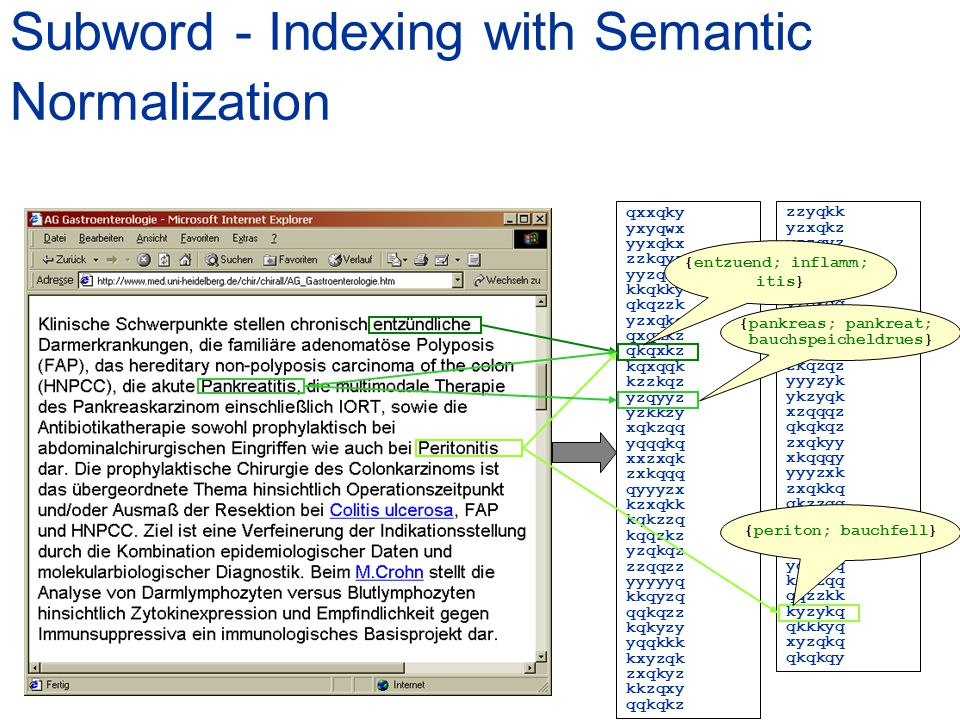 Subword - Indexing with Semantic Normalization