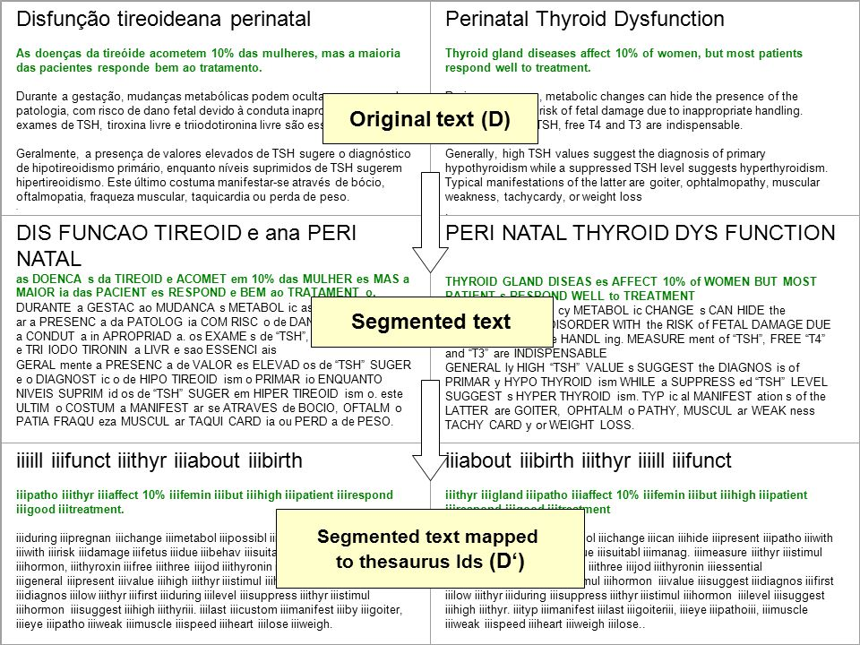 Segmented text mapped to thesaurus Ids (D')