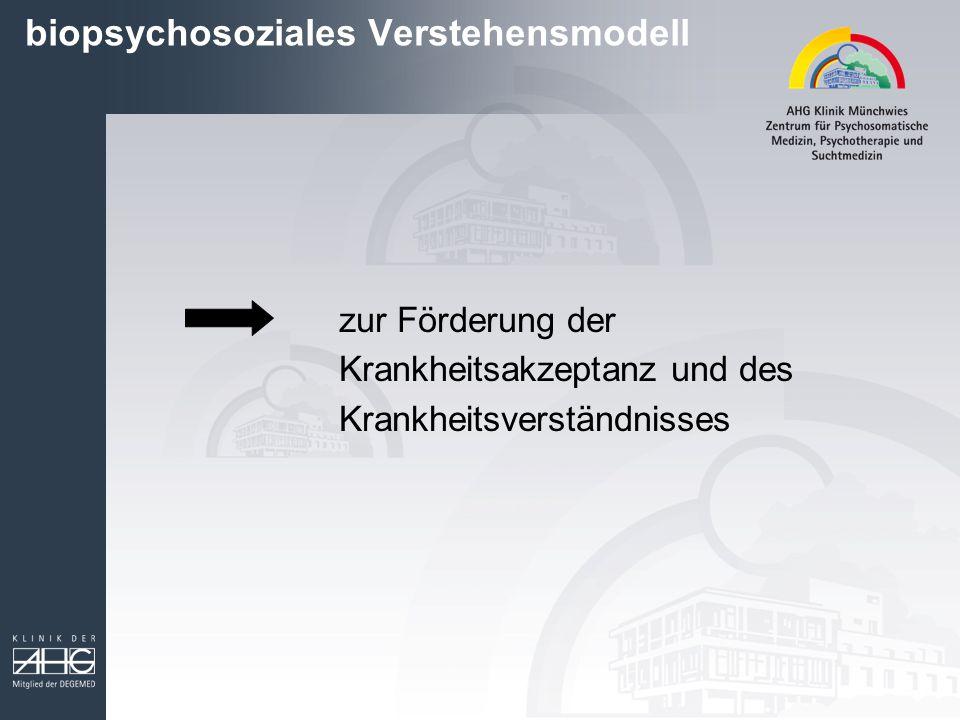biopsychosoziales Verstehensmodell