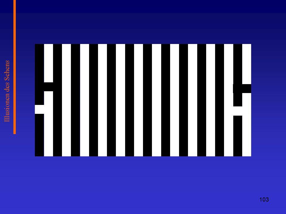 Illusionen des Sehens