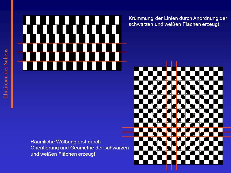 Illusionen des Sehens Krümmung der Linien durch Anordnung der schwarzen und weißen Flächen erzeugt.