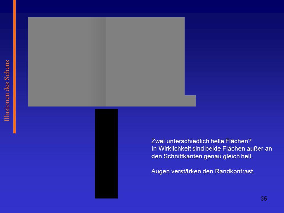 Illusionen des Sehens Zwei unterschiedlich helle Flächen