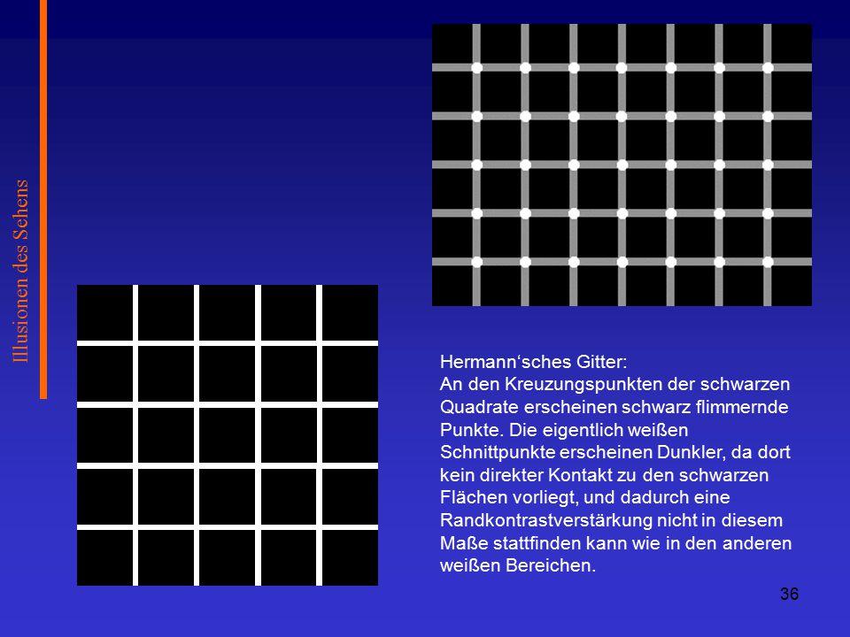 Illusionen des Sehens Hermann'sches Gitter: