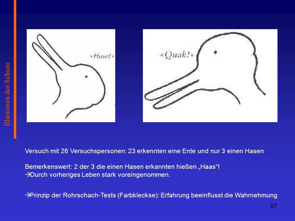 Illusionen des Sehens Versuch mit 26 Versuchspersonen: 23 erkennten eine Ente und nur 3 einen Hasen.
