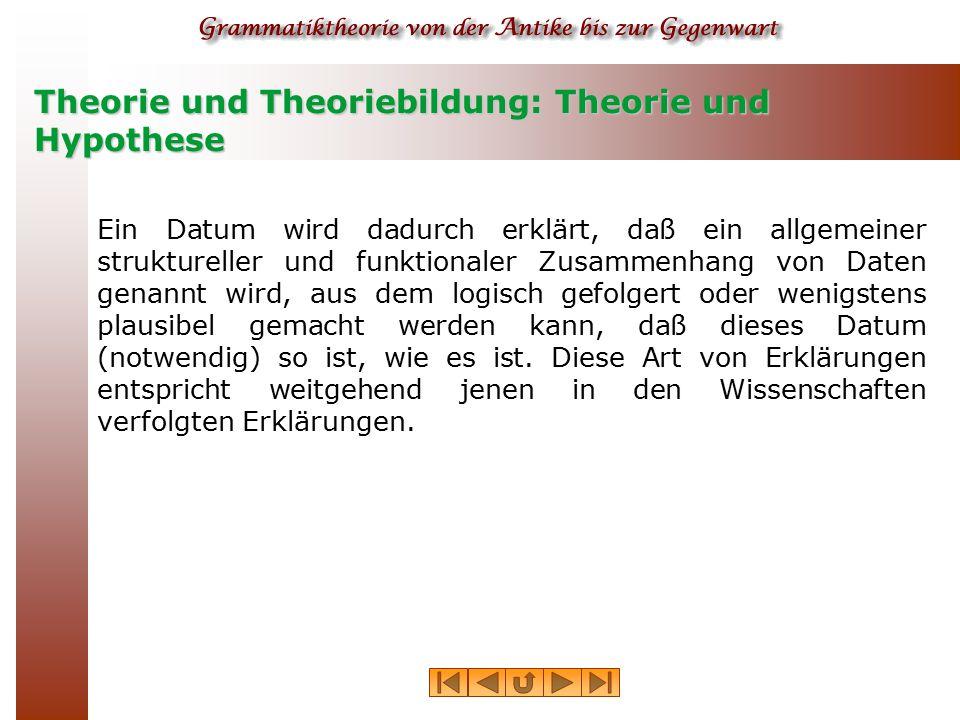 Theorie und Theoriebildung: Theorie und Hypothese