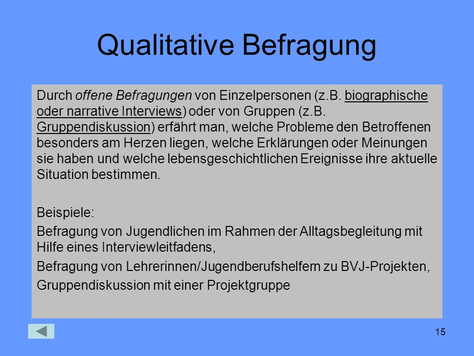 Qualitative Befragung