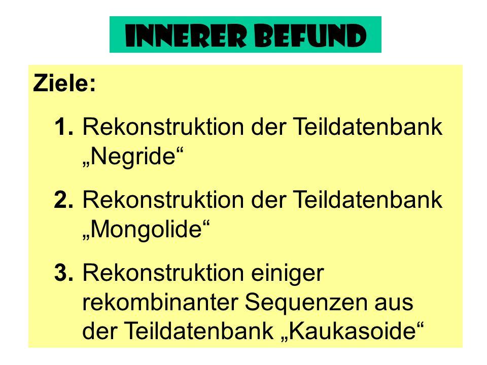 """Innerer Befund Ziele: 1. Rekonstruktion der Teildatenbank """"Negride"""