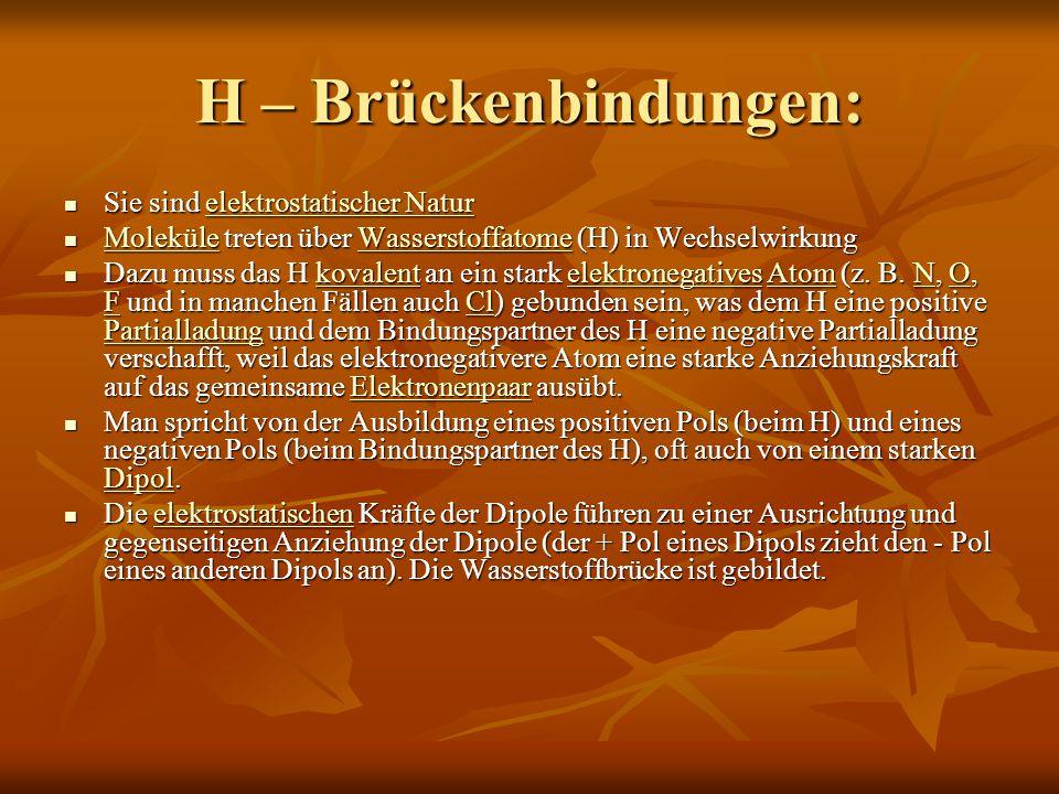 H – Brückenbindungen: Sie sind elektrostatischer Natur