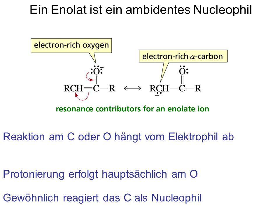 Ein Enolat ist ein ambidentes Nucleophil