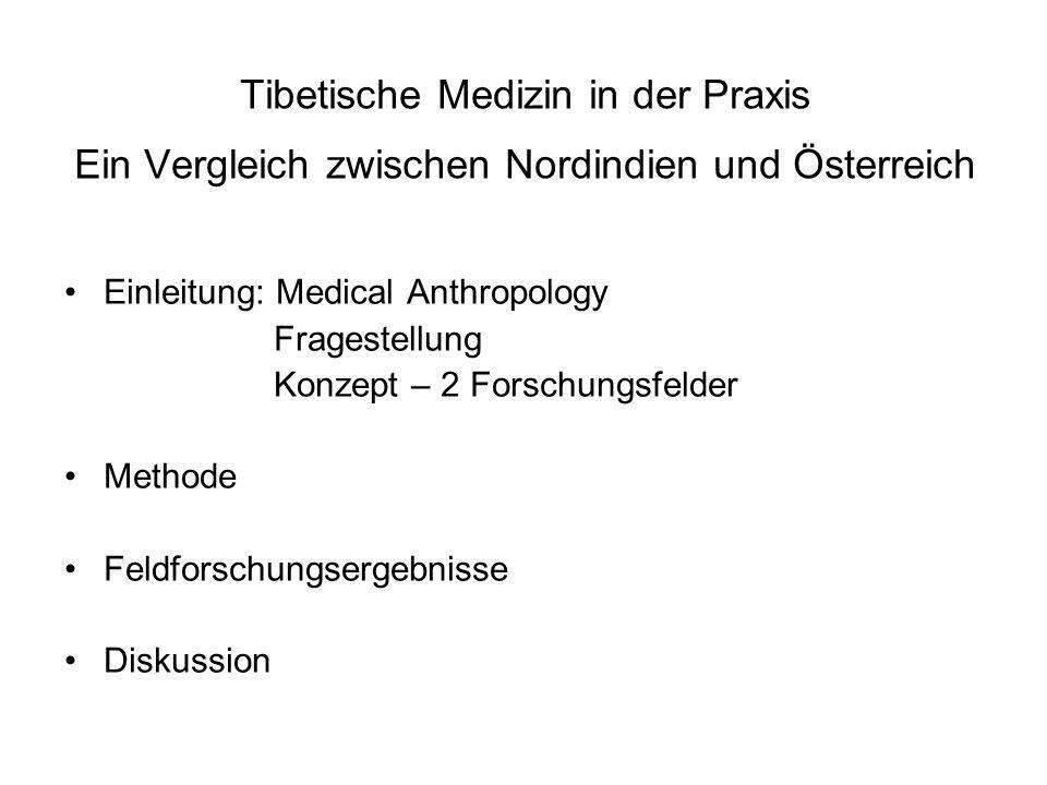 Tibetische Medizin in der Praxis Ein Vergleich zwischen Nordindien und Österreich
