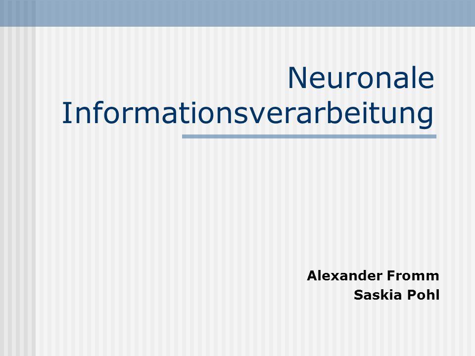 Neuronale Informationsverarbeitung
