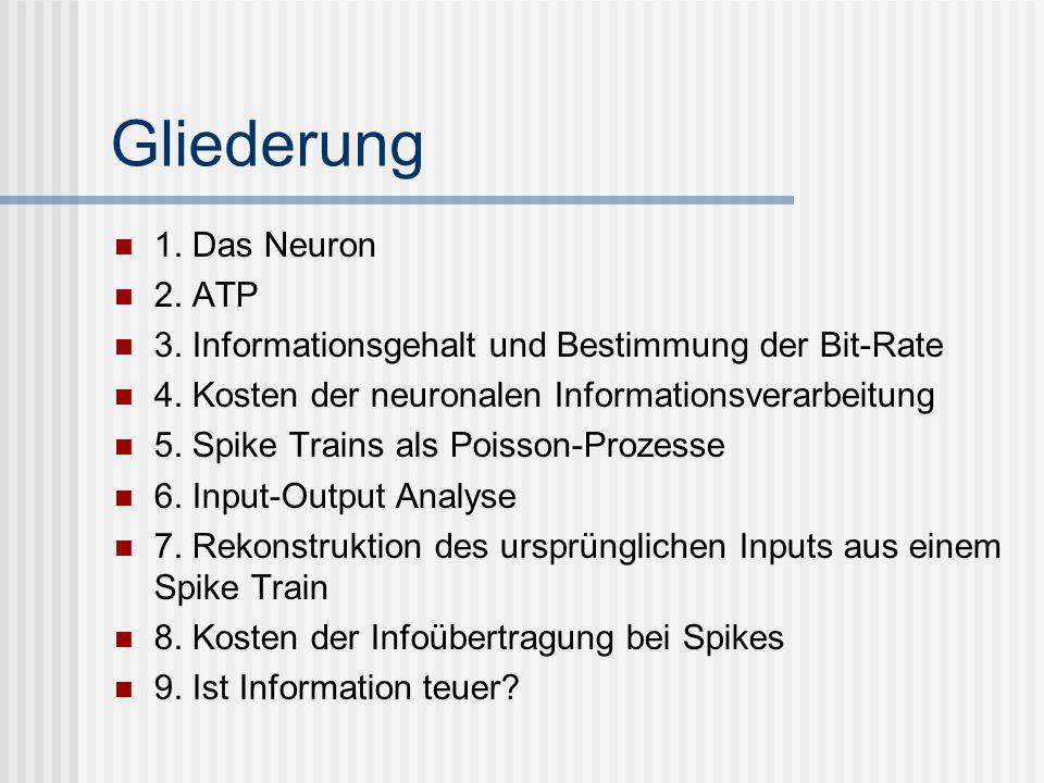 Gliederung 1. Das Neuron 2. ATP