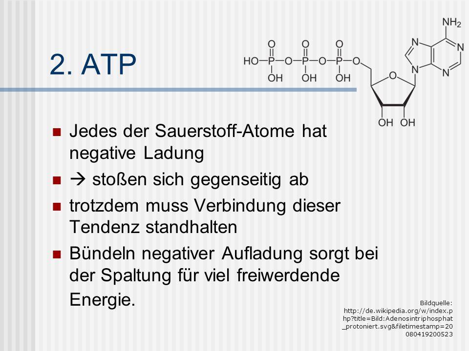 2. ATP Jedes der Sauerstoff-Atome hat negative Ladung