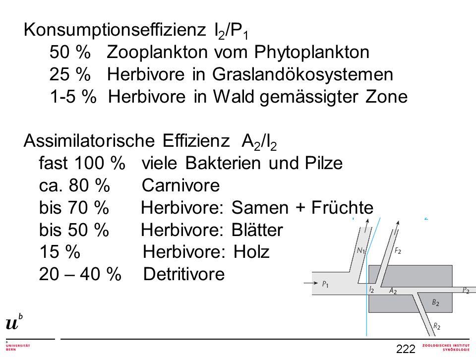 Konsumptionseffizienz I2/P1 50 % Zooplankton vom Phytoplankton