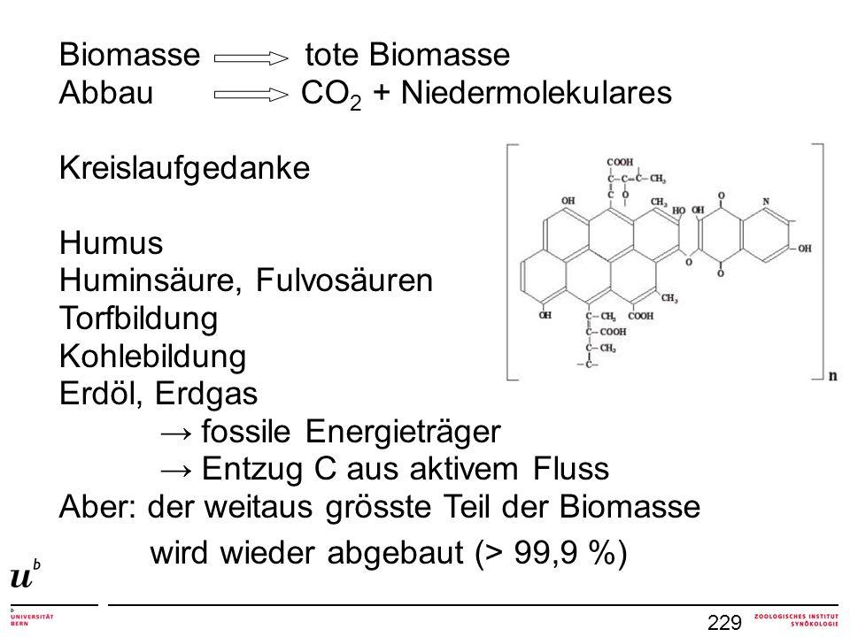 Biomasse tote Biomasse Abbau CO2 + Niedermolekulares Kreislaufgedanke