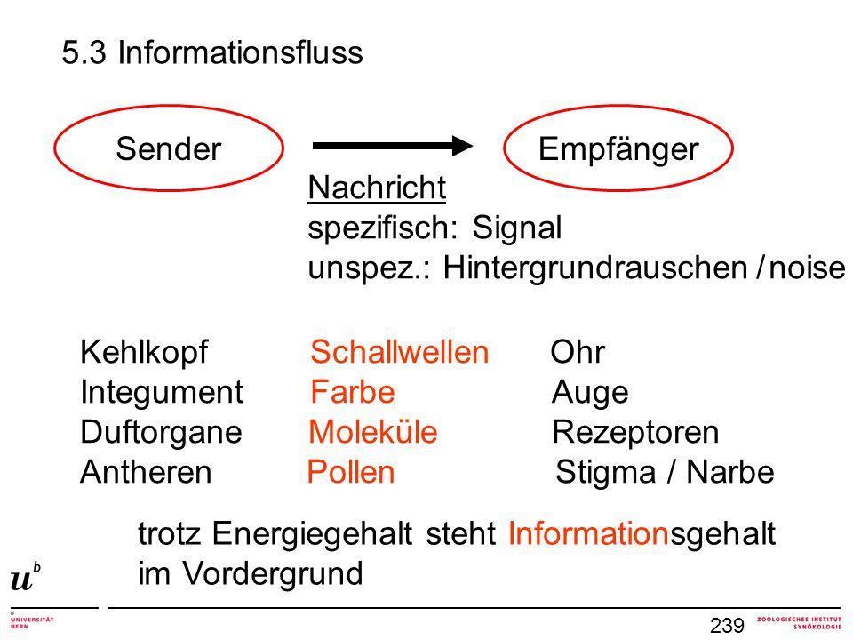 unspez.: Hintergrundrauschen / noise