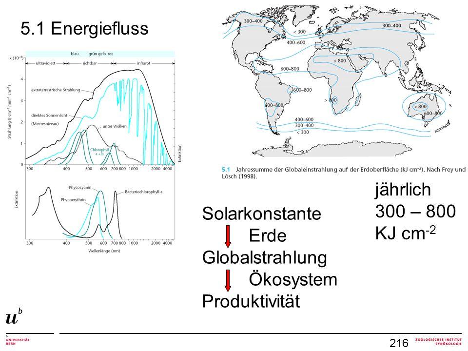 5.1 Energiefluss jährlich 300 – 800 KJ cm-2 Solarkonstante Erde