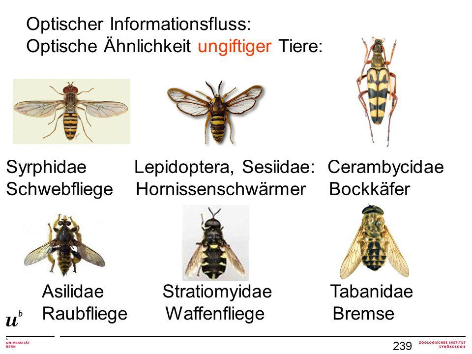 Optischer Informationsfluss: Optische Ähnlichkeit ungiftiger Tiere: