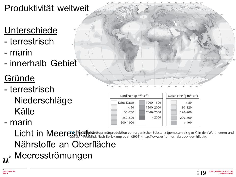 Produktivität weltweit Unterschiede - terrestrisch - marin