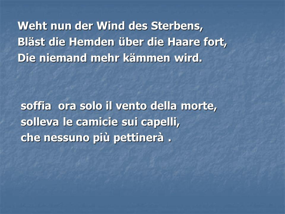 Weht nun der Wind des Sterbens,