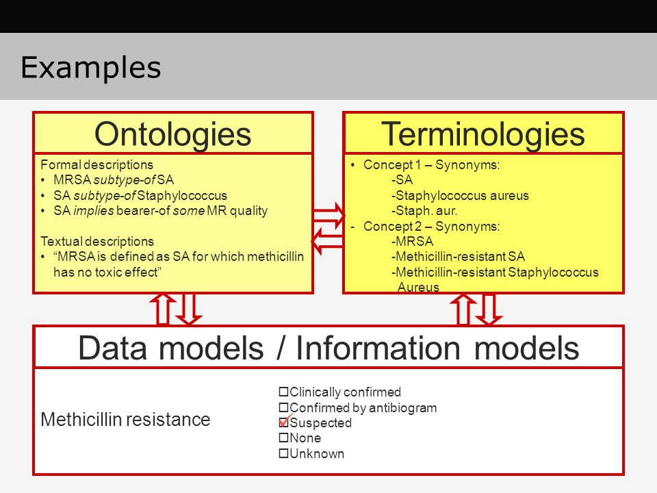 Data models / Information models