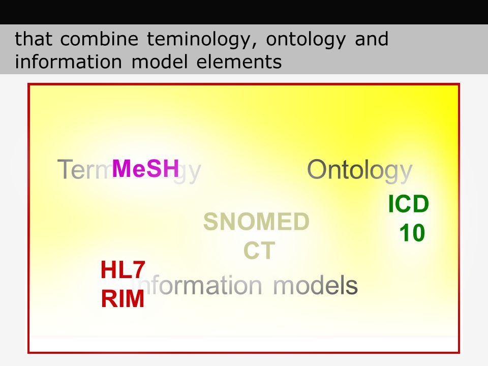 that combine teminology, ontology and information model elements