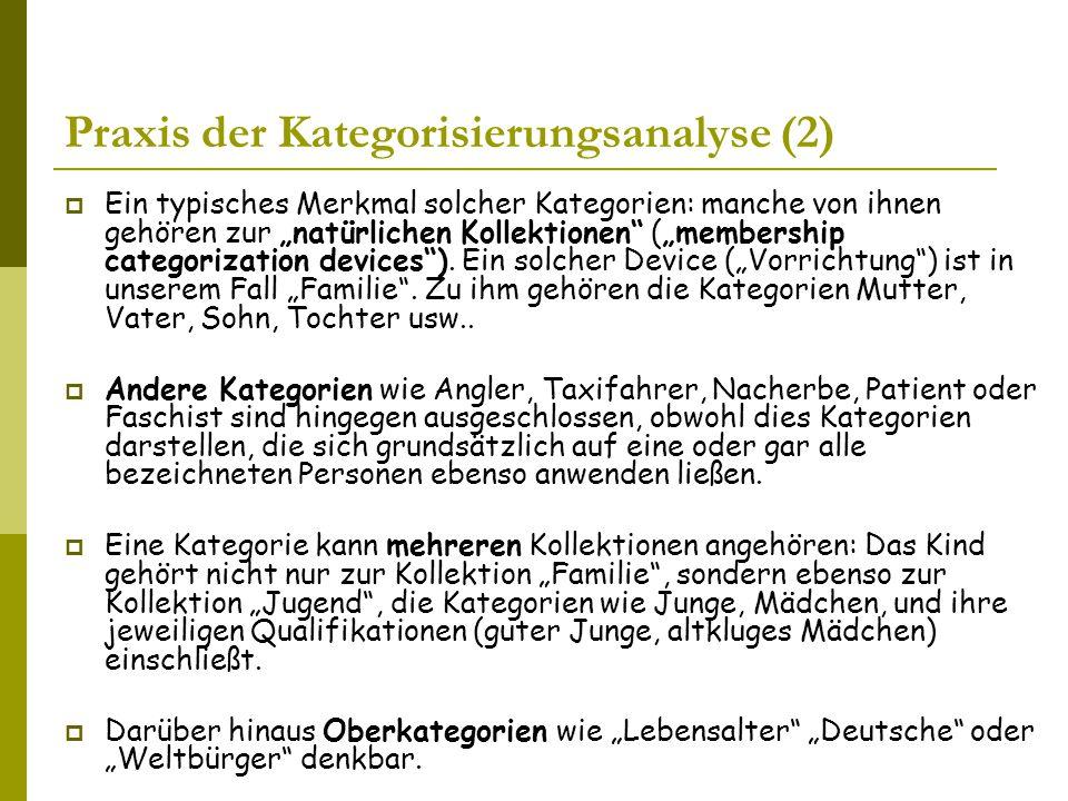 Praxis der Kategorisierungsanalyse (2)