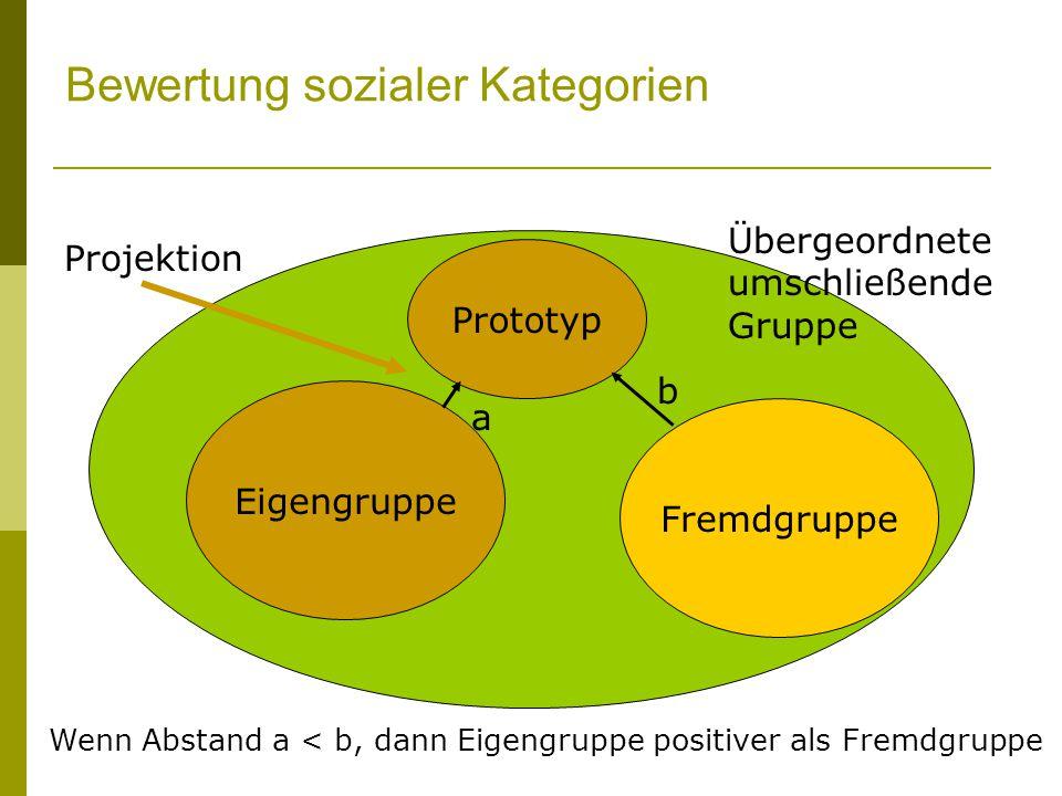 Bewertung sozialer Kategorien