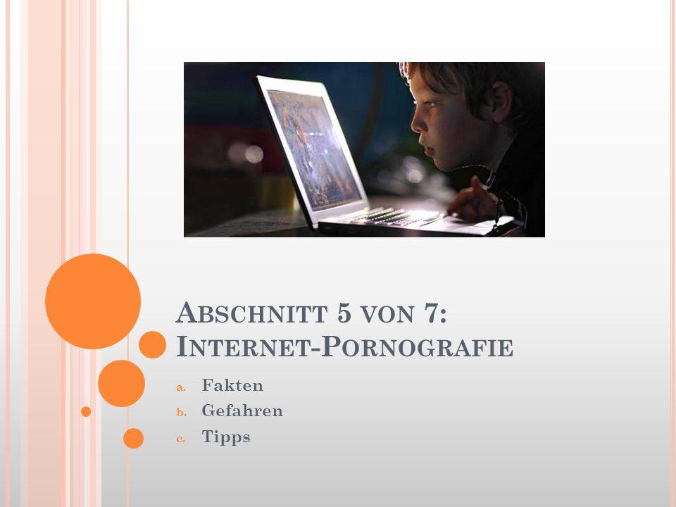 Abschnitt 5 von 7: Internet-Pornografie