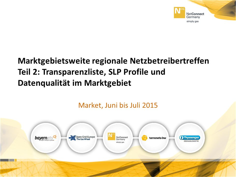 Marktgebietsweite regionale Netzbetreibertreffen Teil 2: Transparenzliste, SLP Profile und Datenqualität im Marktgebiet