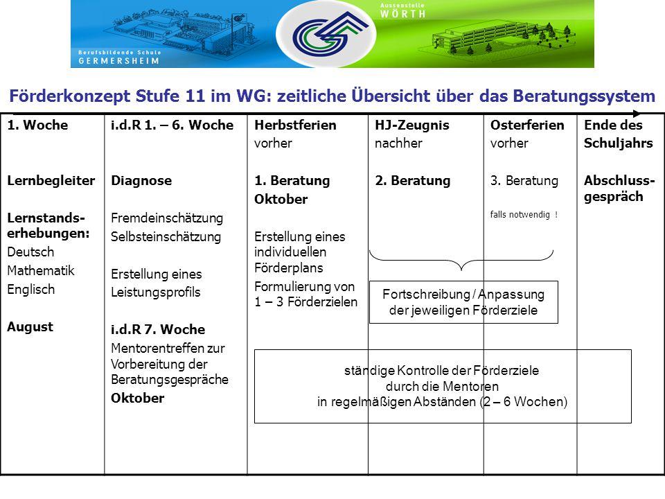 Förderkonzept Stufe 11 im WG: zeitliche Übersicht über das Beratungssystem