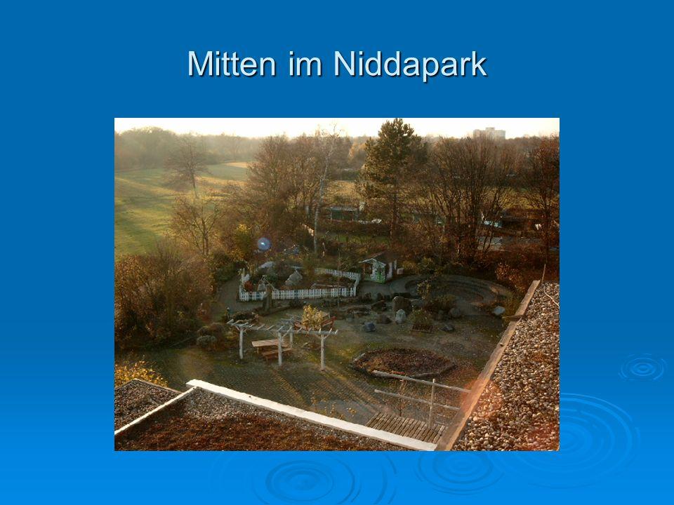Mitten im Niddapark