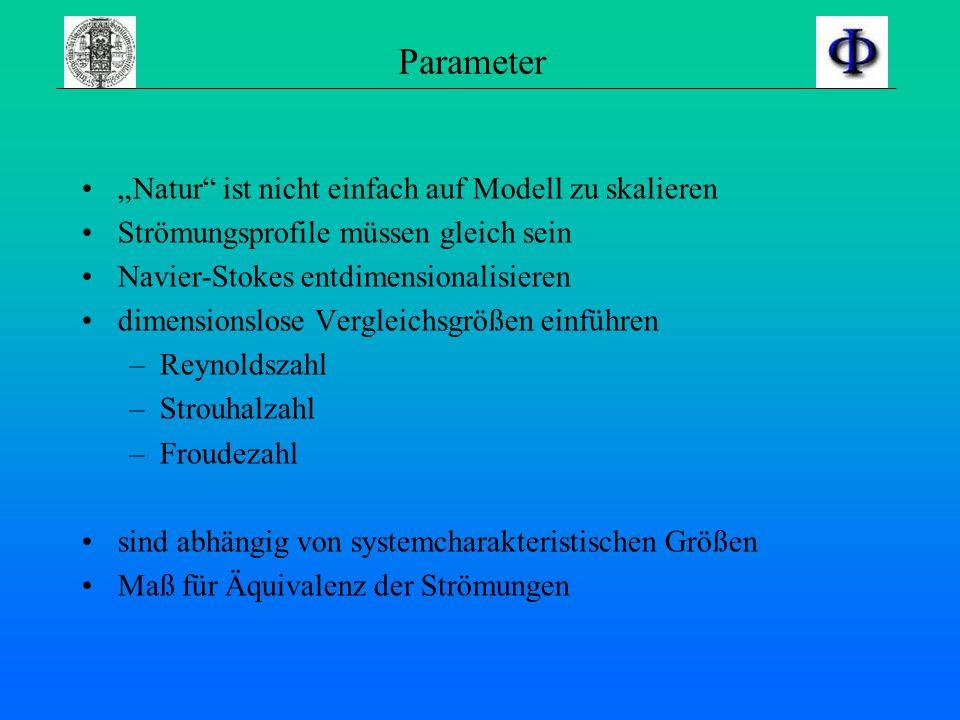 """Parameter """"Natur ist nicht einfach auf Modell zu skalieren"""