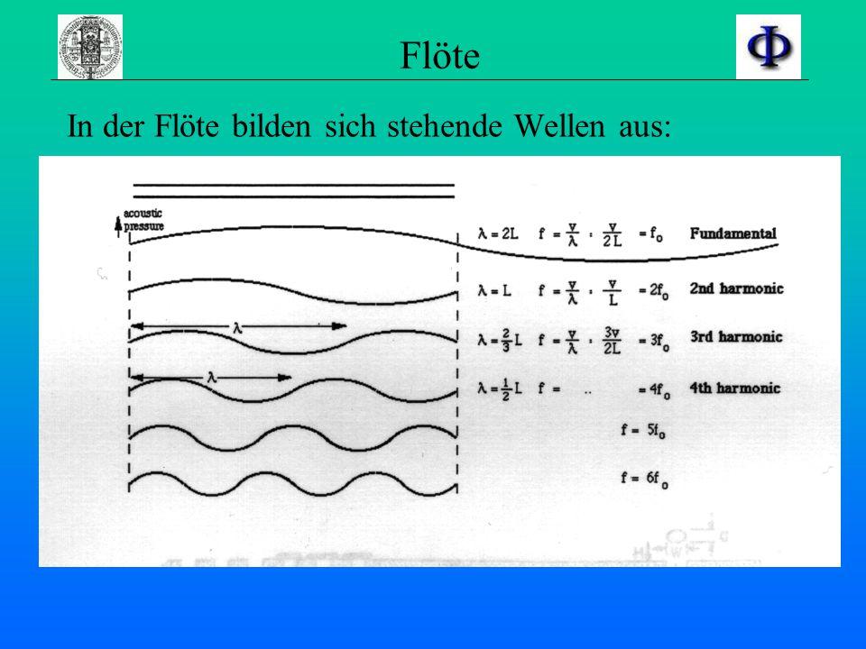 Flöte In der Flöte bilden sich stehende Wellen aus: