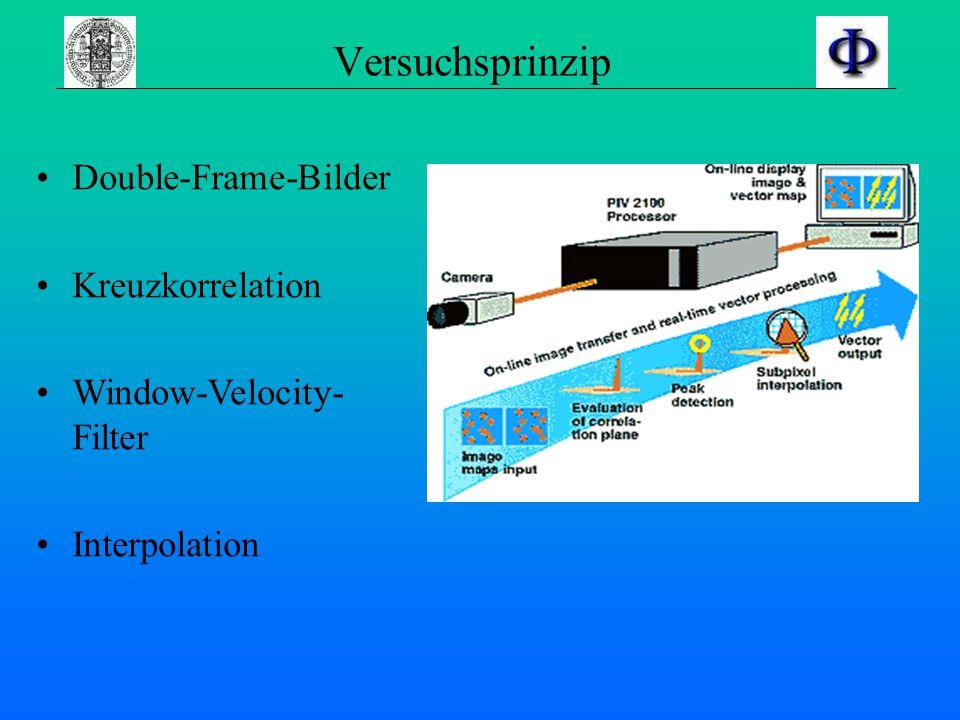 Versuchsprinzip Double-Frame-Bilder Kreuzkorrelation