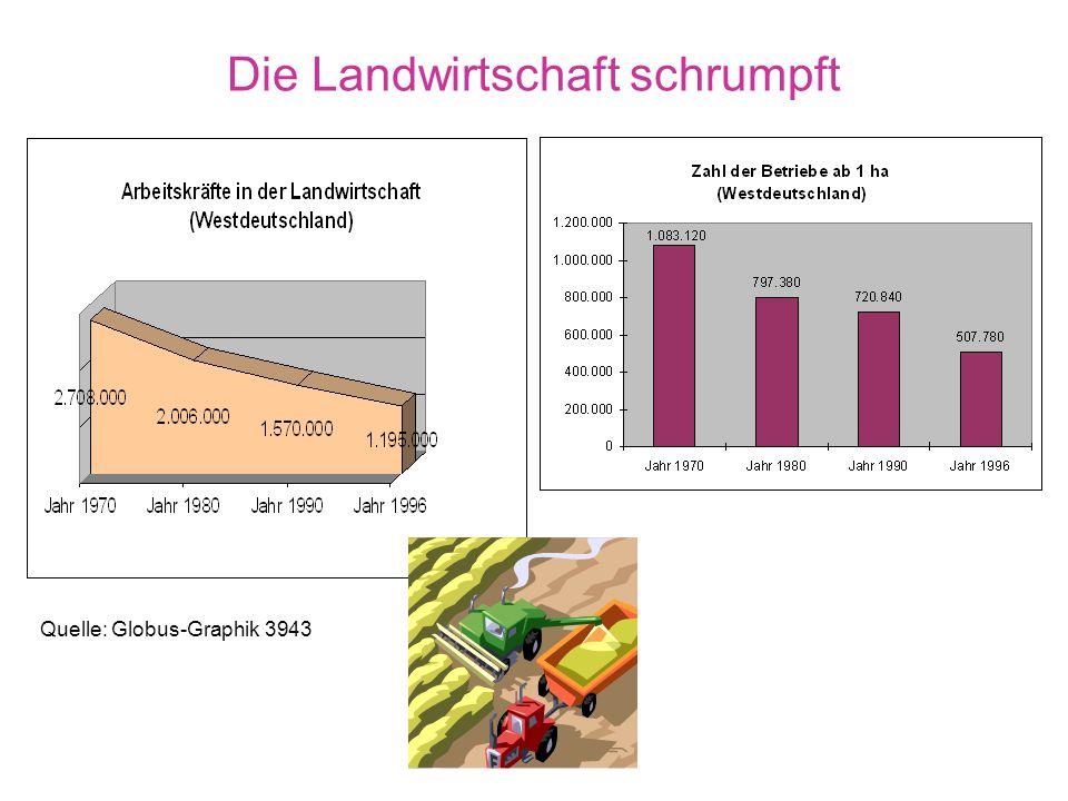 Die Landwirtschaft schrumpft