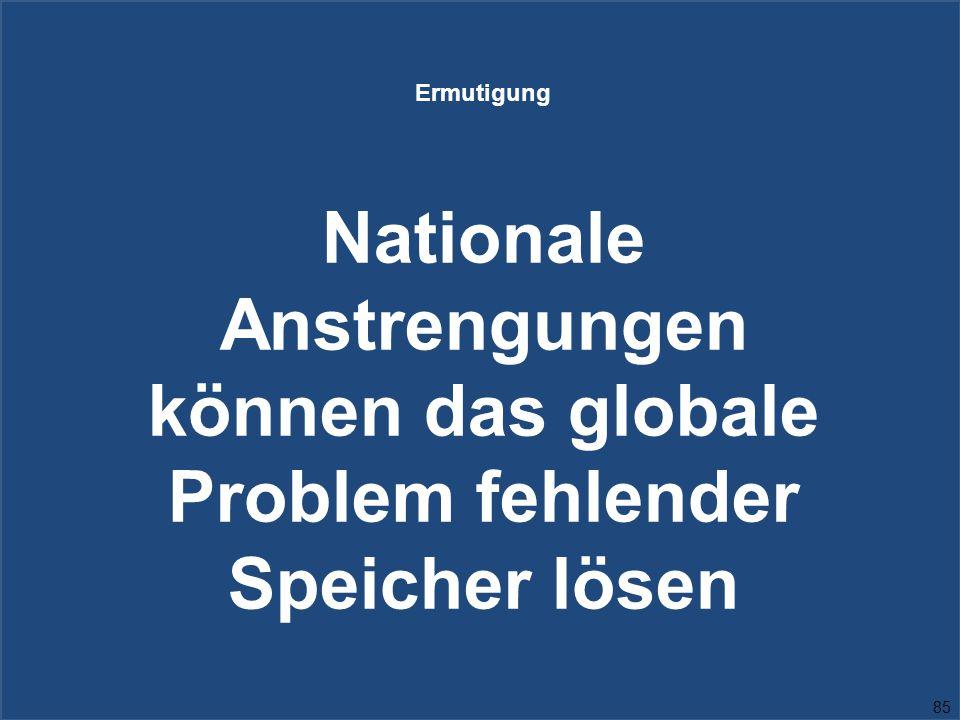 Ermutigung Nationale Anstrengungen können das globale Problem fehlender Speicher lösen 85