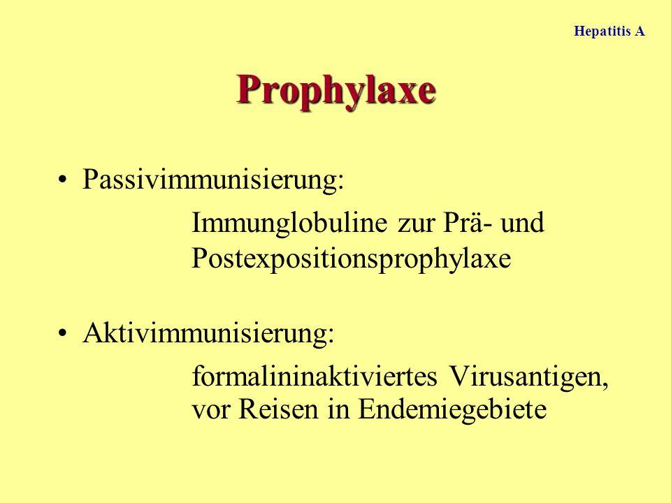 Prophylaxe Passivimmunisierung: