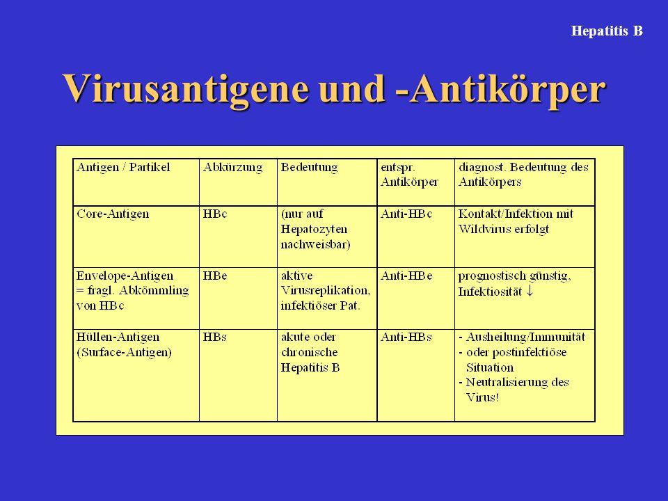 Virusantigene und -Antikörper