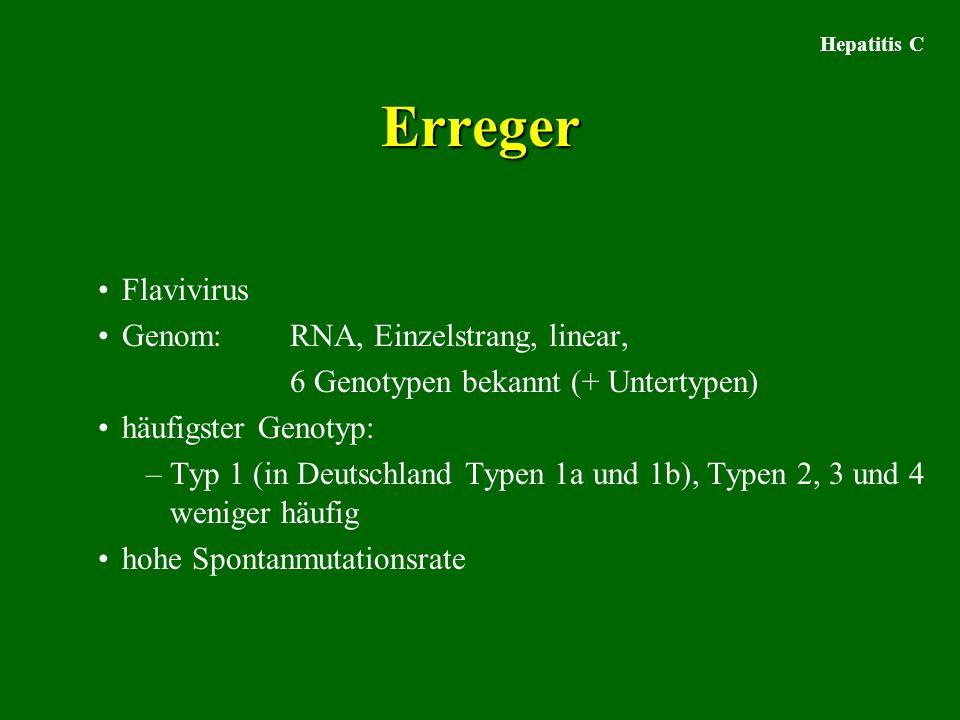 Erreger Flavivirus Genom: RNA, Einzelstrang, linear,