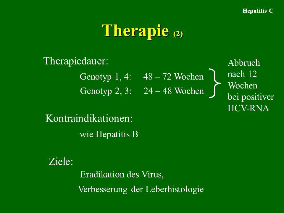 Therapie (2) Therapiedauer: Kontraindikationen: Ziele: