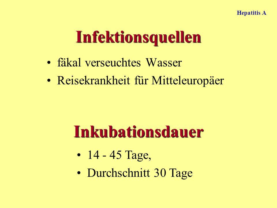Infektionsquellen Inkubationsdauer