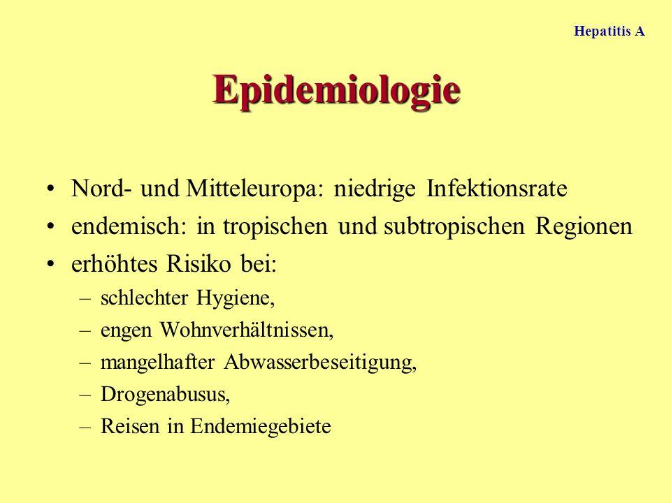 Epidemiologie Nord- und Mitteleuropa: niedrige Infektionsrate