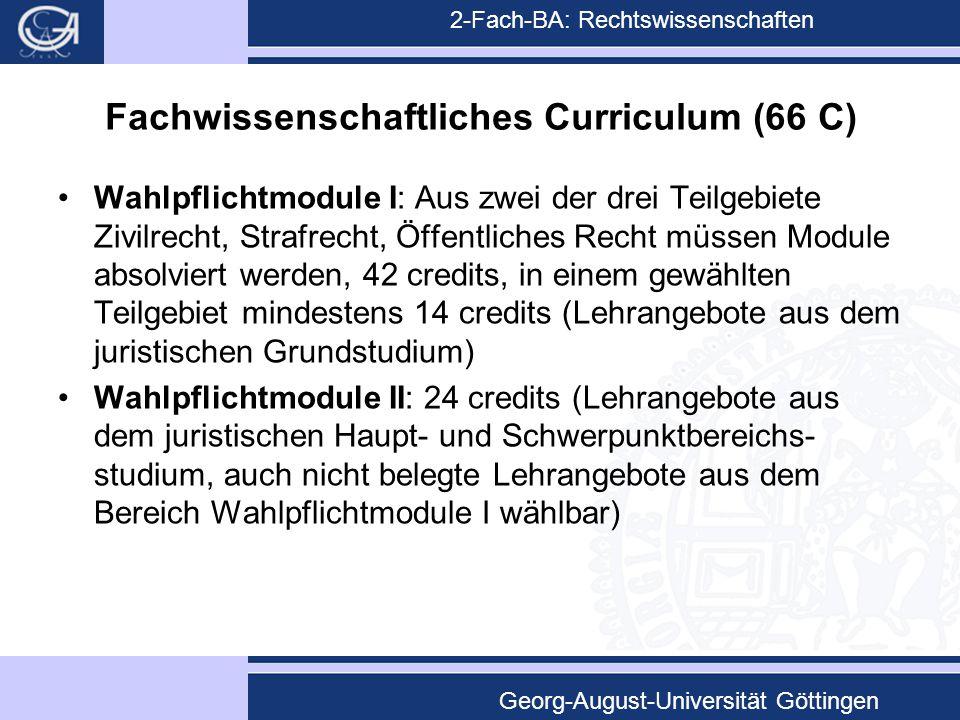 Fachwissenschaftliches Curriculum (66 C)