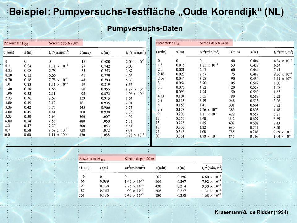 "Beispiel: Pumpversuchs-Testfläche ""Oude Korendijk (NL)"
