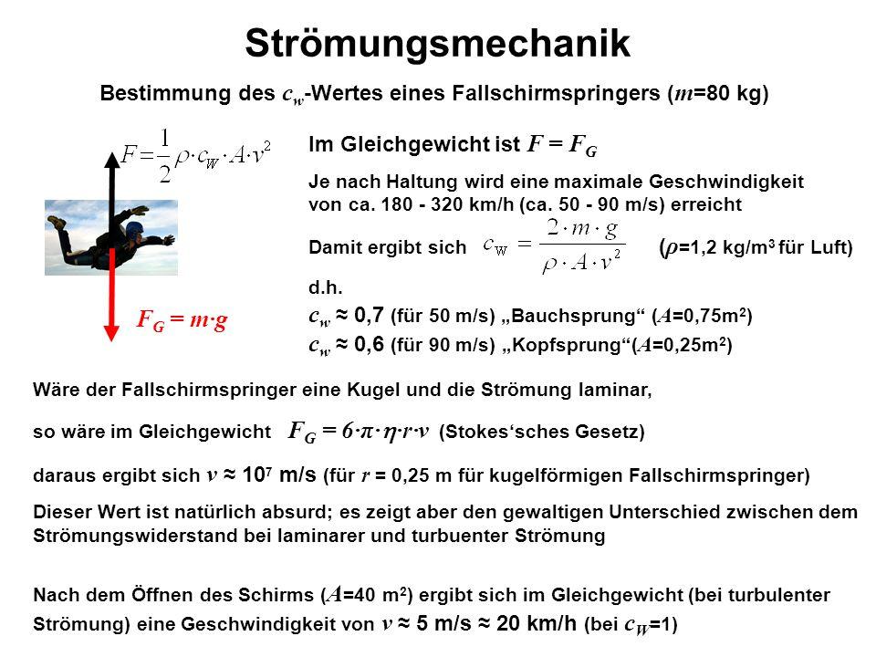 Bestimmung des cw-Wertes eines Fallschirmspringers (m=80 kg)