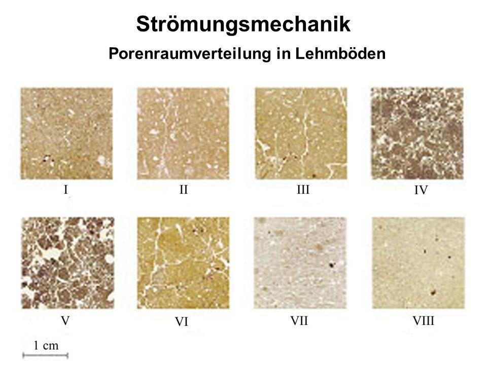 Porenraumverteilung in Lehmböden