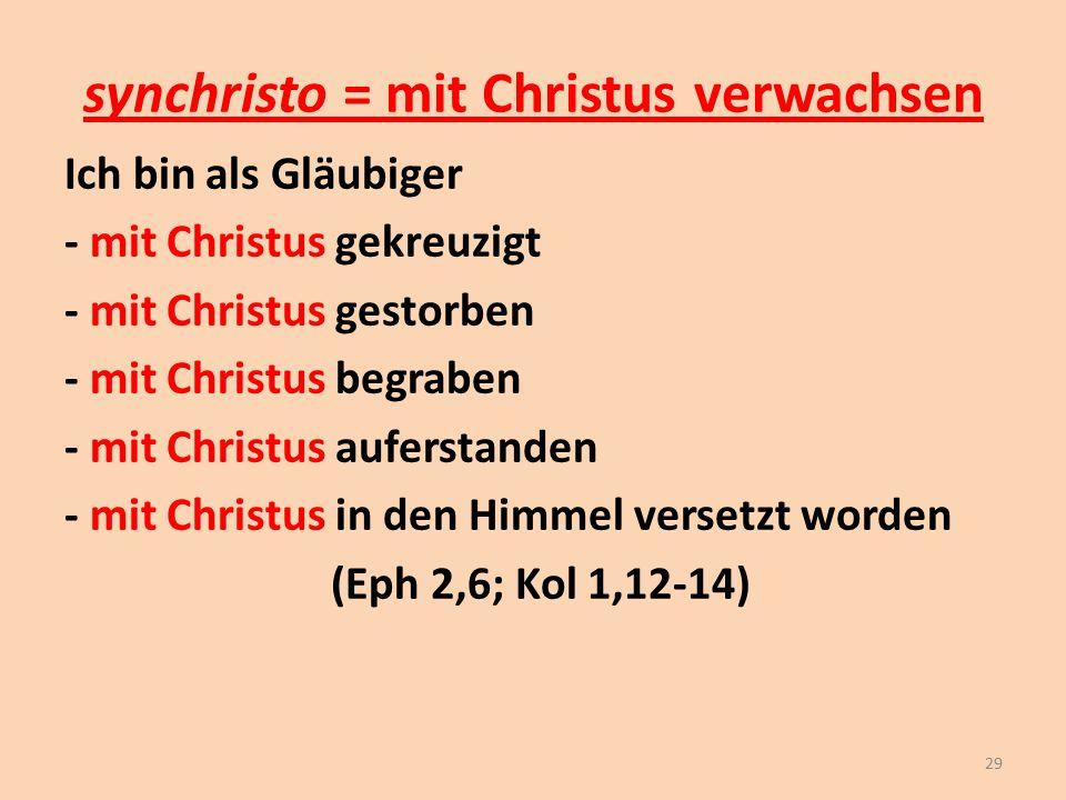 synchristo = mit Christus verwachsen